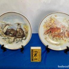 Antigüedades: PAREJA DE PLATOS DE PORCELANA INGLESA, NUMERADOS Y SELLADOS, AÑOS 70. Lote 254279650