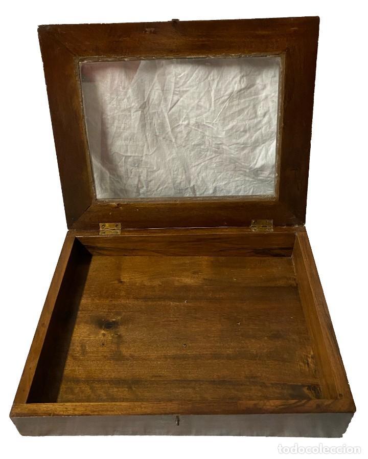 Antigüedades: Antiguo mueble para meter colecciones, vitrina expositor. de nogal. S. XIX. - Foto 3 - 259709450