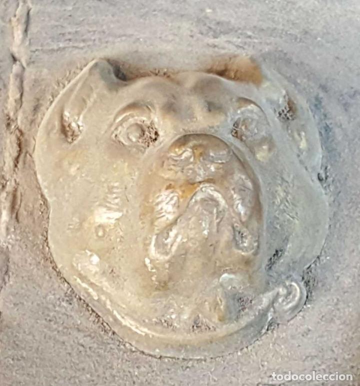 Antigüedades: BOCAL PARA CABALLO. CUERO. REMATES Y HEBILLA EN LATÓN. SIGLO XIX. - Foto 3 - 260046930