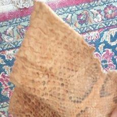 Antigüedades: AUTÉNTICO PIEL DE SERPIENTE ESPECTACULAR. MIDE 2.90 M . VER FOTOS. Lote 260833915