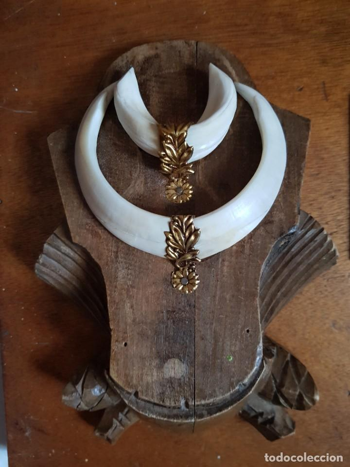 COLMILLO TROFEO MADERA TALLADA ALFONSINO MARFIL ANTIGUO EMBELLECEDOR DE METAL. (Antigüedades - Hogar y Decoración - Trofeos de Caza Antiguos)