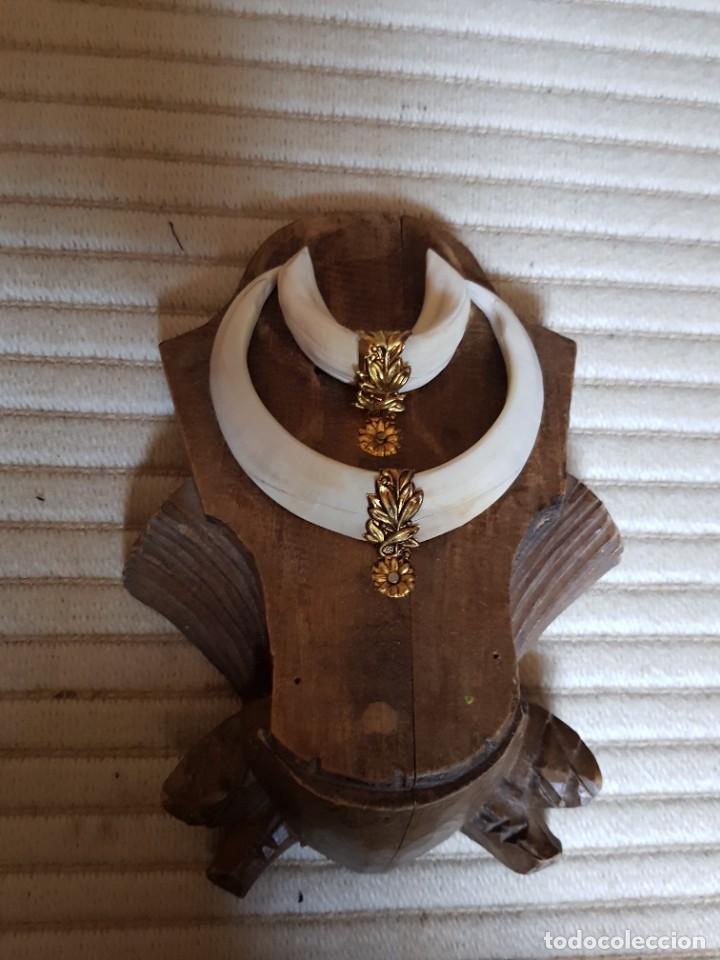 Antigüedades: Colmillo trofeo madera tallada alfonsino marfil antiguo embellecedor de metal. - Foto 5 - 261226145