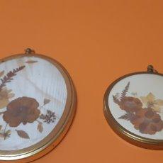 Antigüedades: FLORES SECAS 2 CUADRITOS. Lote 262056525