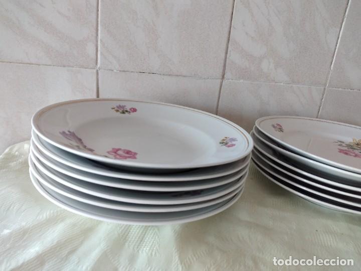 Antigüedades: Lote de 12 platos llanos y hondos de porcelana viribus unitis VSK USC,germany - Foto 3 - 262130010