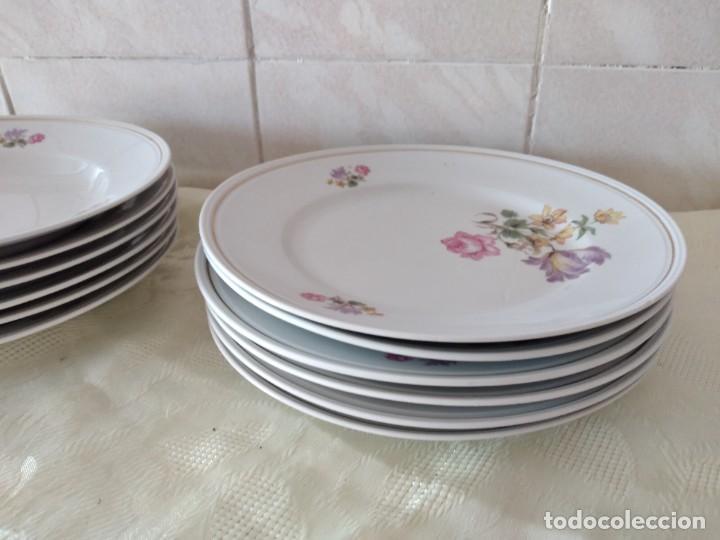 Antigüedades: Lote de 12 platos llanos y hondos de porcelana viribus unitis VSK USC,germany - Foto 4 - 262130010