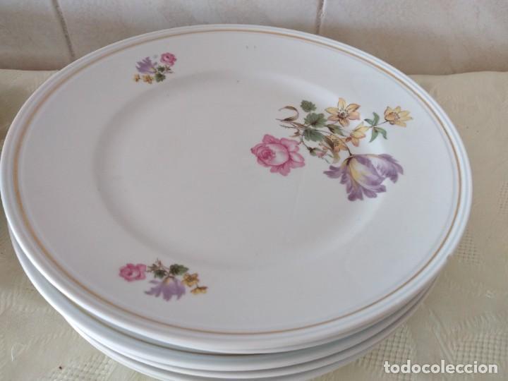 Antigüedades: Lote de 12 platos llanos y hondos de porcelana viribus unitis VSK USC,germany - Foto 5 - 262130010