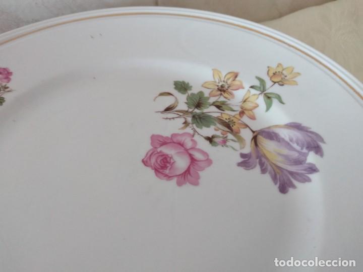 Antigüedades: Lote de 12 platos llanos y hondos de porcelana viribus unitis VSK USC,germany - Foto 6 - 262130010