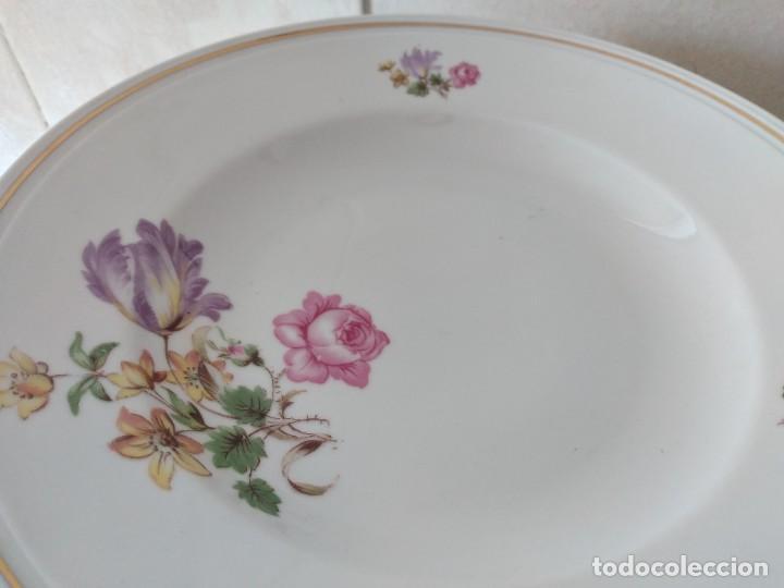 Antigüedades: Lote de 12 platos llanos y hondos de porcelana viribus unitis VSK USC,germany - Foto 8 - 262130010