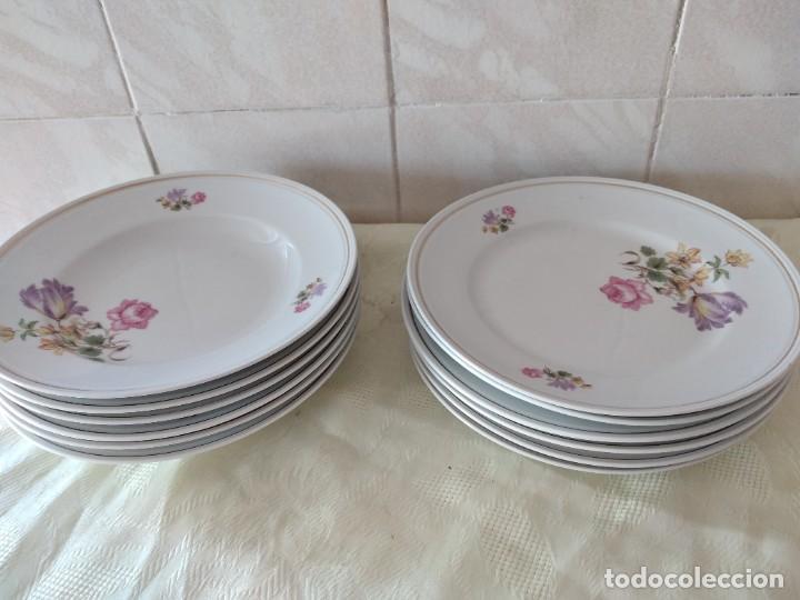 Antigüedades: Lote de 12 platos llanos y hondos de porcelana viribus unitis VSK USC,germany - Foto 9 - 262130010