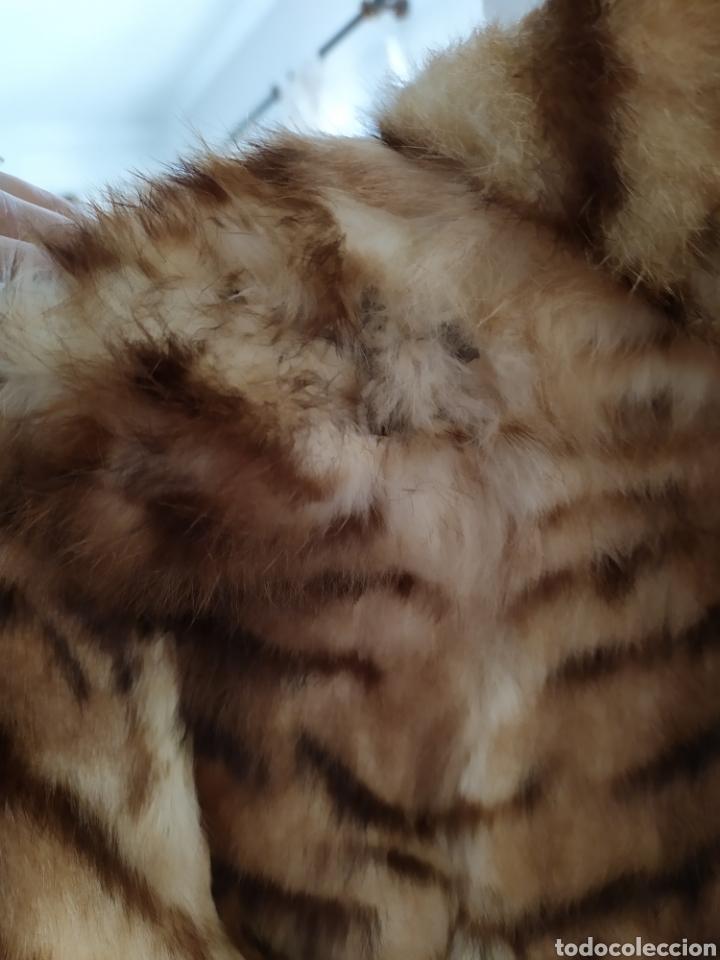 Antigüedades: Chaqueta de pelo vintage con desgarro - Foto 5 - 262260075
