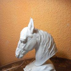 Antigüedades: CABEZA DE CABALLO ROSENTHAL. Lote 262612490