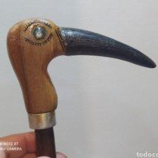Antigüedades: ESPECTACULAR BASTÓN ANTIGUO CON EMPUÑADURA DE CABEZA DE PÁJARO DE MADERA TALLADA. Lote 262783945