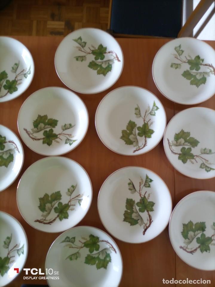 12 PLATOS HONDOS ANTIGUA VAJILLA LIMOGES (Antigüedades - Porcelana y Cerámica - Francesa - Limoges)