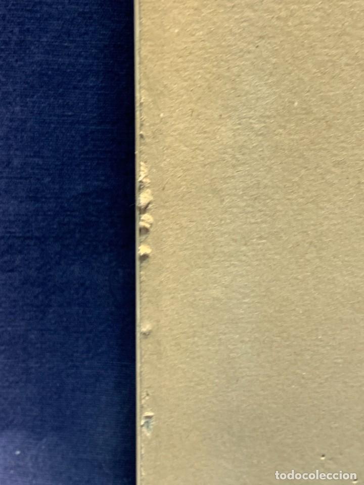 Antigüedades: TRES AZULEJOS DISEÑO DECORATIVOS IMPRESOS SERIGRAFIA MOTIVOS VEGETALES MACARRON ENMARCADOR 61X25CMS - Foto 7 - 262966795
