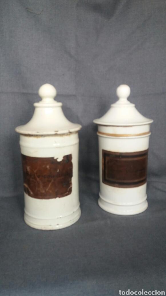 LOTE DE DOS ALBARELOS DE FARMACIA DEL SIGLO XIX (Antigüedades - Porcelanas y Cerámicas - Manises)