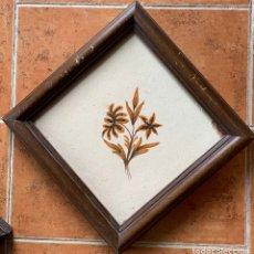 Antigüedades: AZULEJO VALENCIANO COMIENZOS S. XIX. ENMARCADO. Lote 263011140