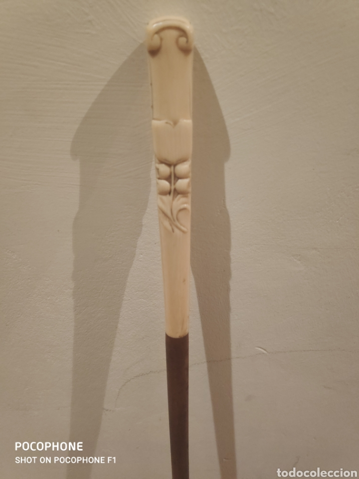 Antigüedades: Trio de bastones finales s.XIX empuñadura en marfil - Foto 8 - 263032535