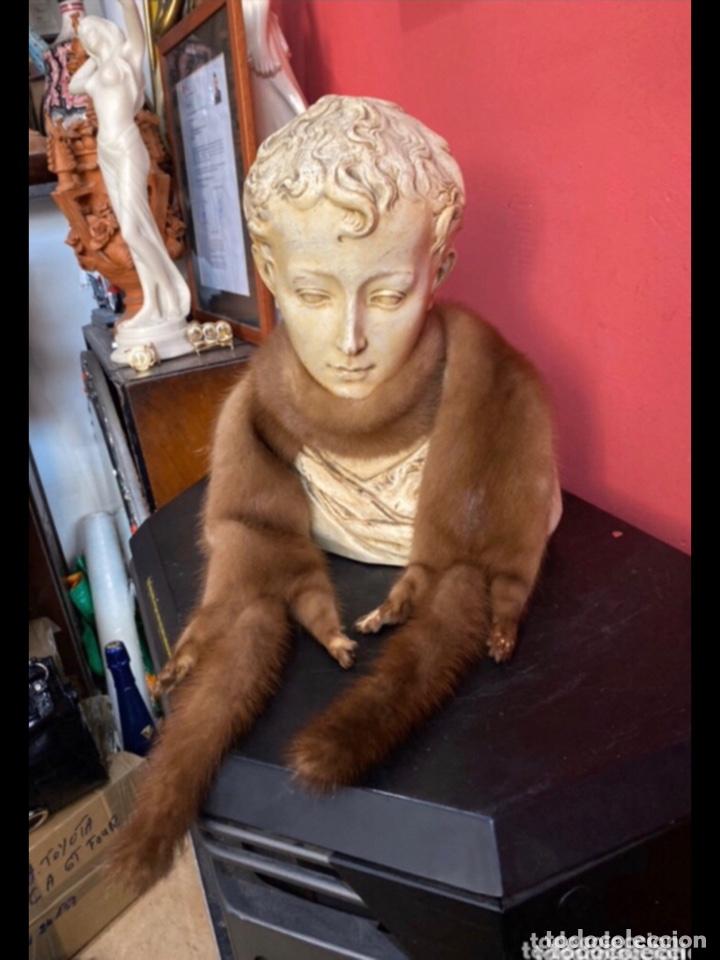 Antigüedades: Preciosa bufanda de 2 hurónes marrones cosidos . Ver fotos - Foto 2 - 263698660
