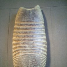 Oggetti Antichi: CAPARAZÓN DE ARMADILLO. Lote 264991939