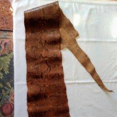Antigüedades: ANTIGUA PIEL CURTIDA DE SERPIENTE 3.65 M.. Lote 268752074
