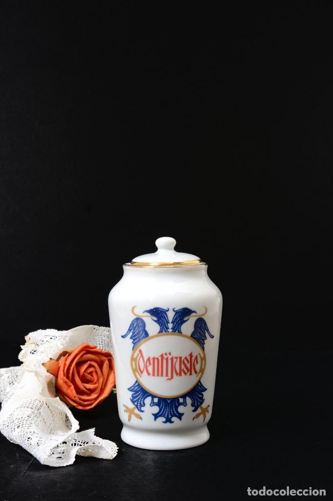 Antigüedades: Pequeño albarelo vintage de Dentijuste porcelana Santa Clara - Foto 2 - 269279838