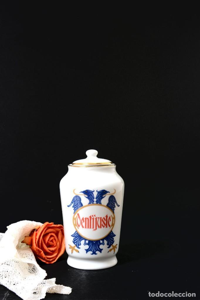Antigüedades: Pequeño albarelo vintage de Dentijuste porcelana Santa Clara - Foto 3 - 269279838
