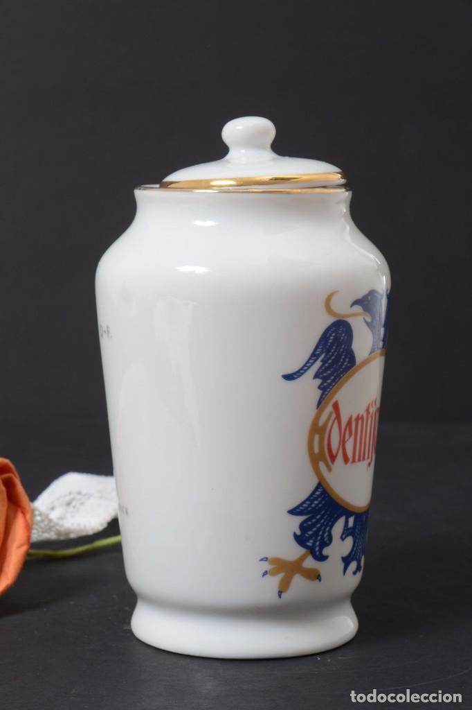 Antigüedades: Pequeño albarelo vintage de Dentijuste porcelana Santa Clara - Foto 4 - 269279838