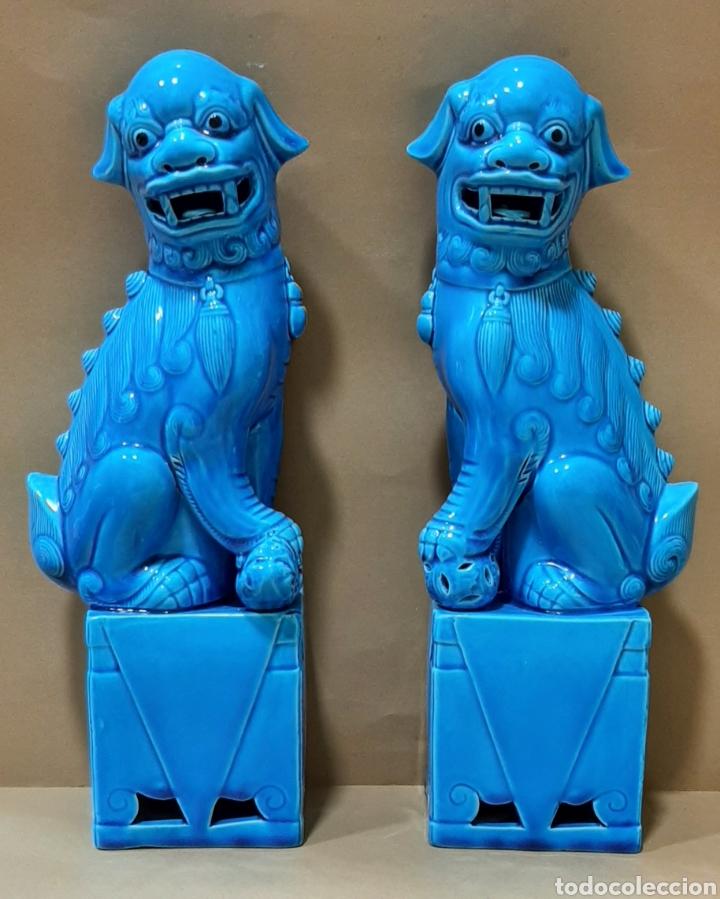 PAREJA DE LEONES FOO, PORCELANA CHINA, 32 CM DE ALTURA (Antigüedades - Porcelanas y Cerámicas - China)