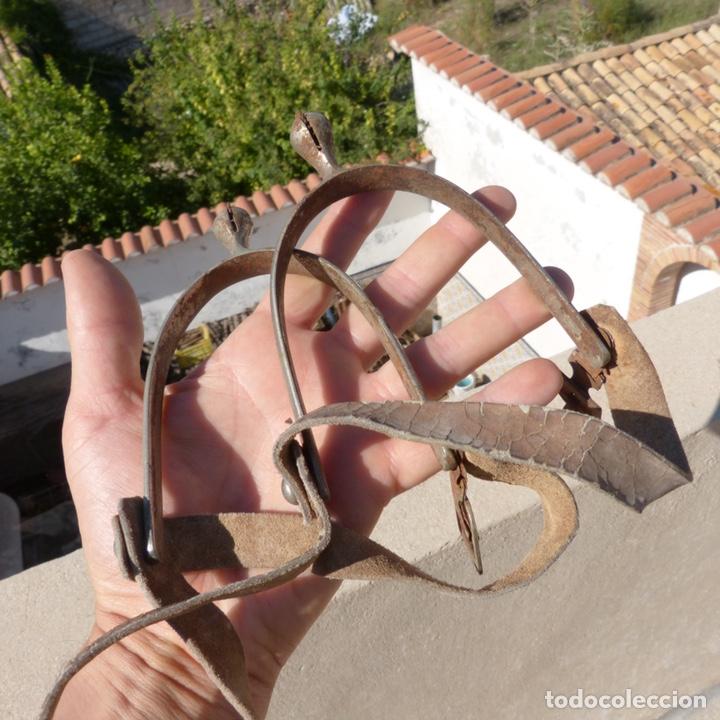 Antigüedades: Antiguas espuelas militares - Foto 2 - 271874758