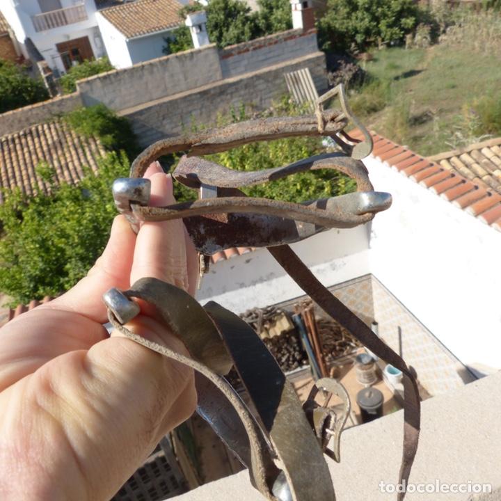 Antigüedades: Antiguas espuelas militares - Foto 4 - 271875088