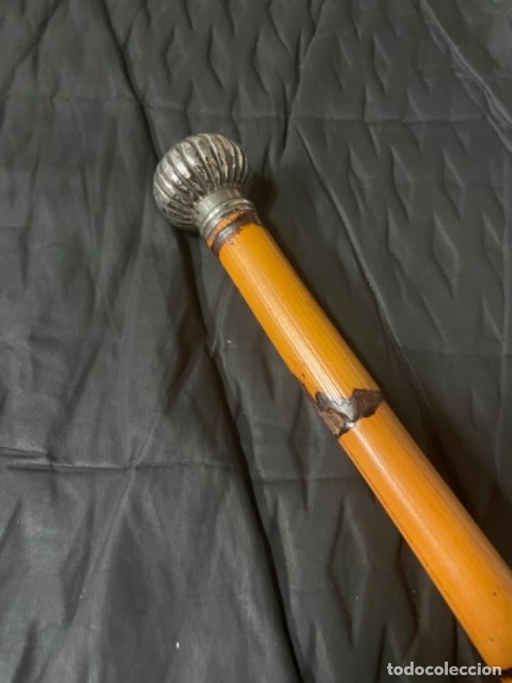 ANTIGUO BASTÓN CABALLERO PRINCIPIO S. XX PUÑO DE PLATA CAÑA DE BRASIL - (Antigüedades - Moda - Bastones Antiguos)