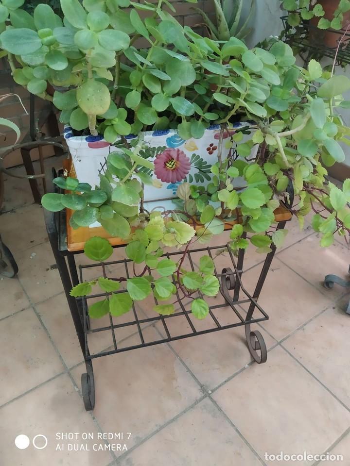 Antigüedades: clasico macetero hierro con mesa madera azulejos, terraza, jardin macetero, jardinera, mesita - Foto 4 - 273457708