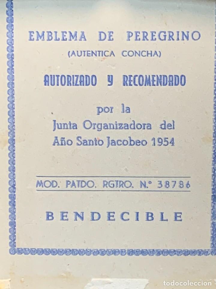 Antigüedades: EMBLEMA PEREGRINACIONES SANTIAGO DE COMPOSTELA CONCHA AUTENTICA 1954 AÑO SANTO JACOBEO 11X8CMS - Foto 2 - 274345093