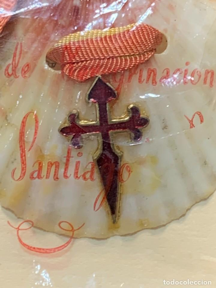 Antigüedades: EMBLEMA PEREGRINACIONES SANTIAGO DE COMPOSTELA CONCHA AUTENTICA 1954 AÑO SANTO JACOBEO 11X8CMS - Foto 6 - 274345093