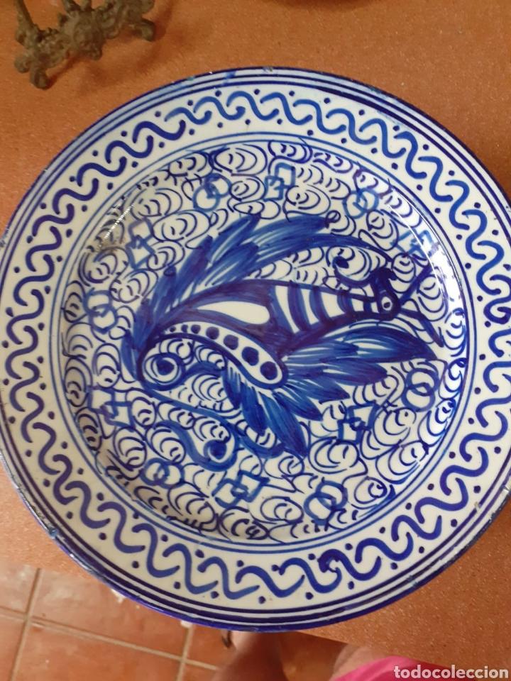 PLATO ANTIGUO MANISES (Antigüedades - Porcelanas y Cerámicas - Manises)