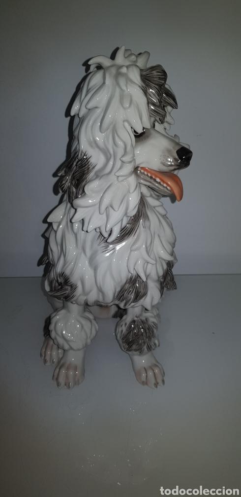 Antigüedades: Perro de Algora - Foto 2 - 276494598