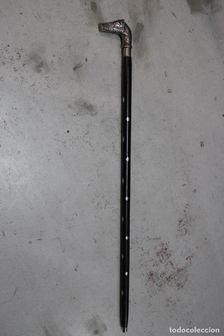 Antigüedades: baston de madera con empuñadura caballo de metal - Foto 4 - 277109588
