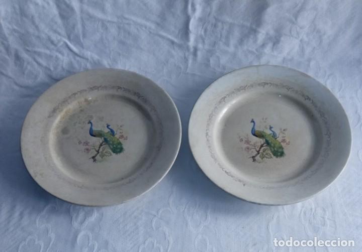 Antigüedades: Pareja de antiguos platos de La Cartuja , Pickman, con pavos reales. - Foto 2 - 277684623