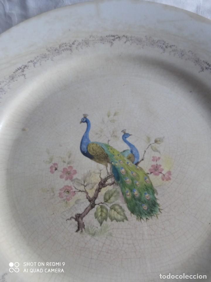 Antigüedades: Pareja de antiguos platos de La Cartuja , Pickman, con pavos reales. - Foto 4 - 277684623