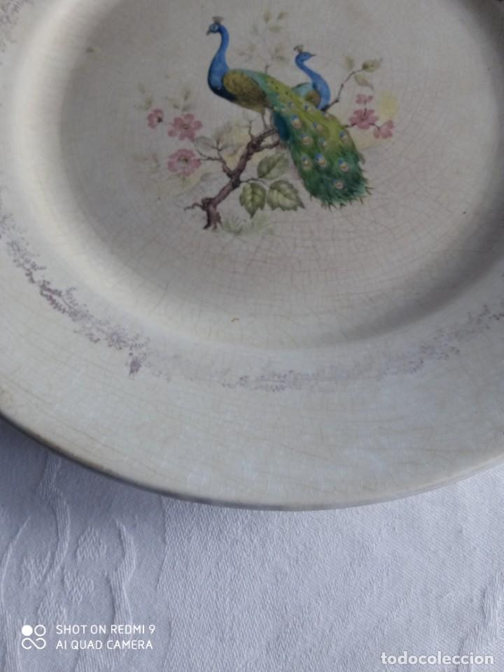 Antigüedades: Pareja de antiguos platos de La Cartuja , Pickman, con pavos reales. - Foto 6 - 277684623