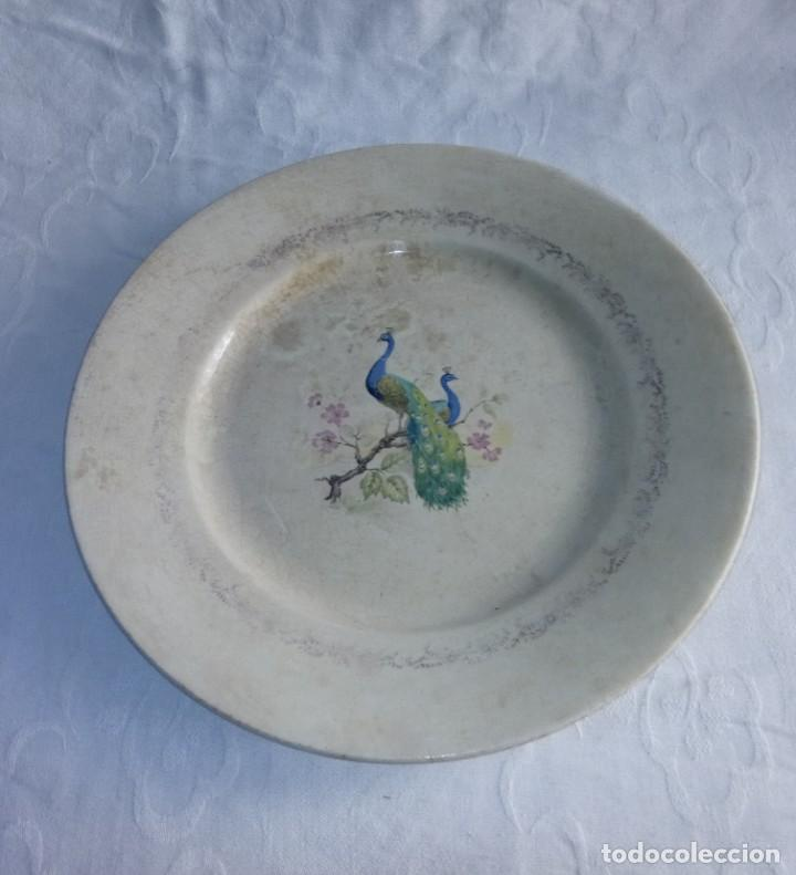 Antigüedades: Pareja de antiguos platos de La Cartuja , Pickman, con pavos reales. - Foto 14 - 277684623