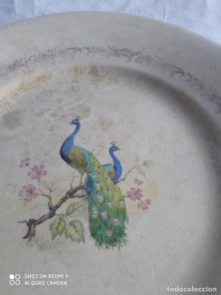 Antigüedades: Pareja de antiguos platos de La Cartuja , Pickman, con pavos reales. - Foto 15 - 277684623