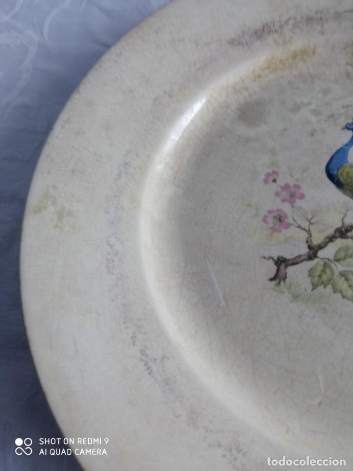 Antigüedades: Pareja de antiguos platos de La Cartuja , Pickman, con pavos reales. - Foto 16 - 277684623