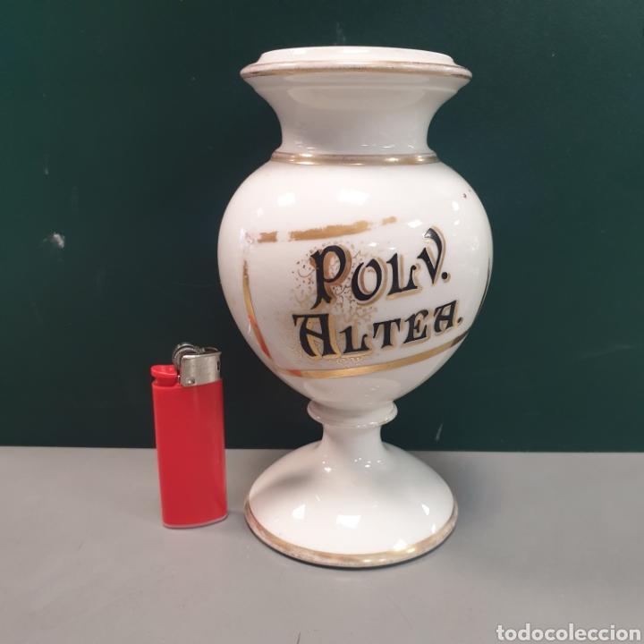 BOTE DE FARMACIA PORCELANA (Antigüedades - Cristal y Vidrio - Farmacia )