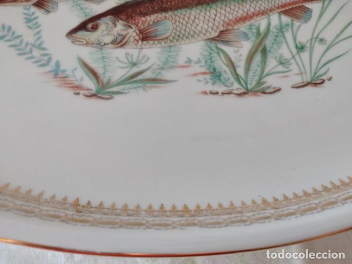 Antigüedades: Preciosa fuente oval de porcelana koenig porzellan bavaria,motivo peces y borde de oro - Foto 5 - 284412708