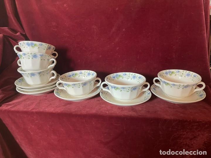 CONSOMÉ DE LA CARTUJA (Antigüedades - Porcelanas y Cerámicas - La Cartuja Pickman)