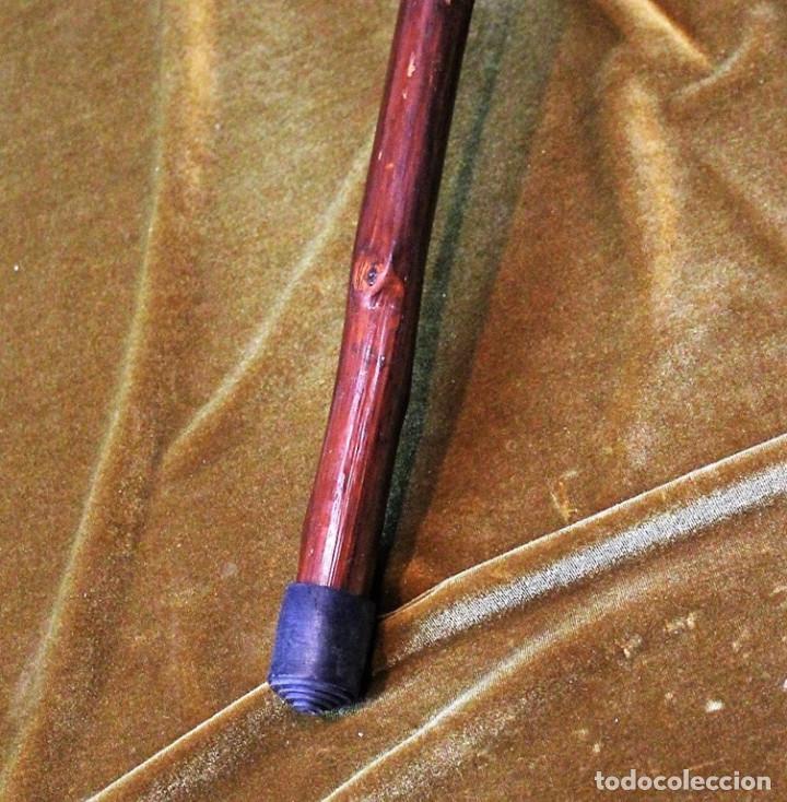 Antigüedades: Bastón de castaño, con tinte oscuro, 90 cm - Foto 2 - 286149038