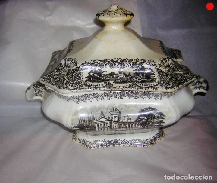 Antigüedades: SOPERA DE PICKMAN LA CARTUJA - Foto 10 - 286519023