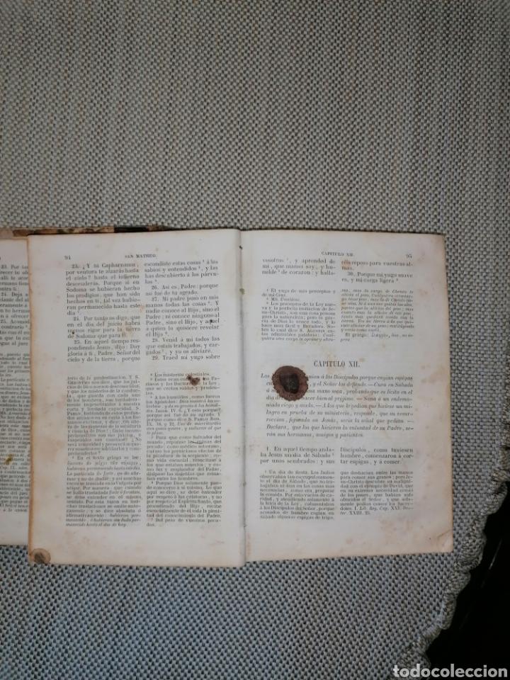 Antigüedades: La sagrada biblia Tesoro de Autores ilustres - Foto 2 - 287815453