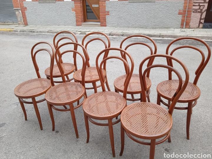Antigüedades: 8 sillas tipo tonet - Foto 2 - 287875558